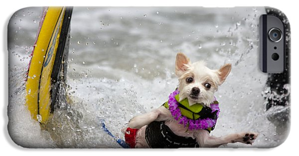 IPhone 6 Case featuring the photograph Bobby Gorgeous Wipes Out by Nathan Rupert
