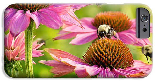 Bumbling Bees IPhone 6 Case by Bill Pevlor