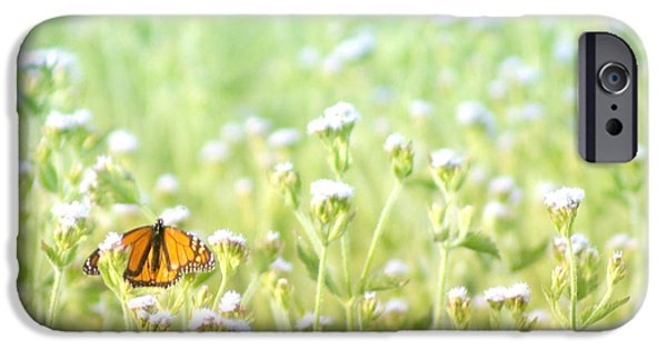 iPhone 6 Case - Butterfly Dreams by Holly Kempe