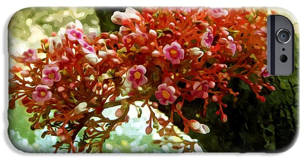 Agricultural iPhone Cases - Carambola Flower iPhone Case by Lanjee Chee