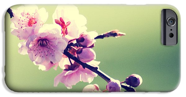IPhone 6 Case featuring the photograph Cherry Blooms by Yulia Kazansky