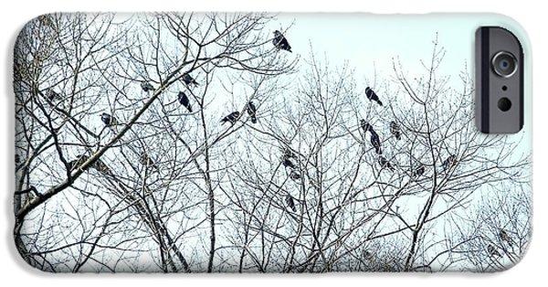 Crow Trees IPhone 6 Case