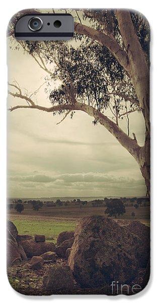 Eldorado Gumtree IPhone 6 Case