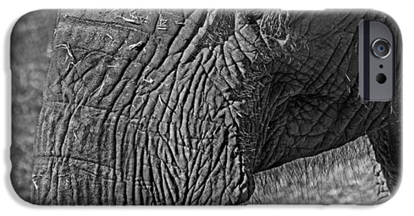 Elephant.. Dont Cry IPhone 6 Case