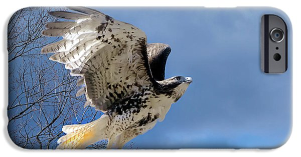 Flight Of The Red Tail IPhone 6 Case by Bill Wakeley