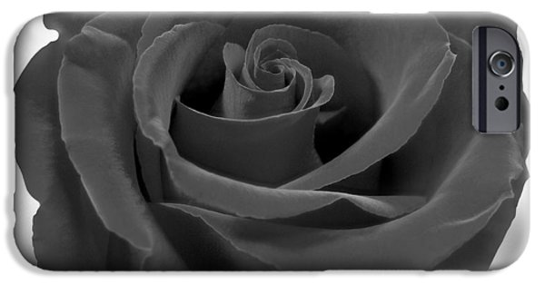 Rose iPhone Cases - Flower 4 iPhone Case by Mike McGlothlen