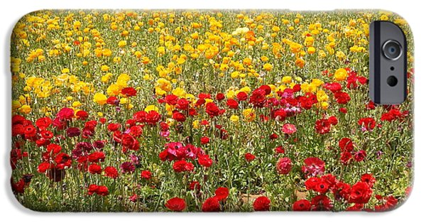 IPhone 6 Case featuring the photograph Flower Rainbow by Nathan Rupert