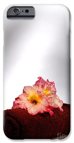 Gladioli iPhone Cases - Flowers on Towel iPhone Case by Olivier Le Queinec