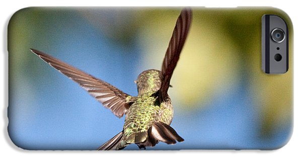 Fly Away With Me IPhone 6 Case by Nathan Rupert