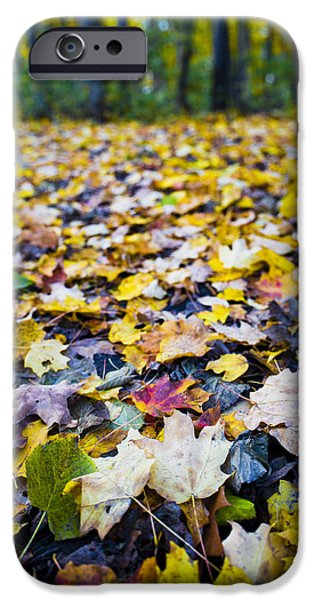 IPhone 6 Case featuring the photograph Foliage by Sebastian Musial