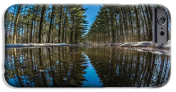 Forest Reflections IPhone 6 Case