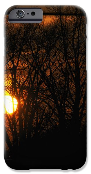 Central Il iPhone Cases - Good Night Sunshine iPhone Case by Thomas Woolworth