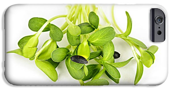 Sunflower Seeds iPhone 6 Case - Green Sunflower Sprouts by Elena Elisseeva