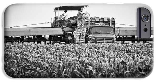 IPhone 6 Case featuring the photograph Harvesting Time by Ricky L Jones