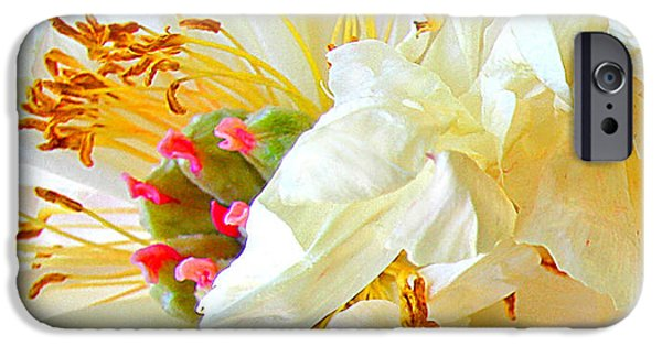 IPhone 6 Case featuring the photograph Heart Of Peony by Nareeta Martin