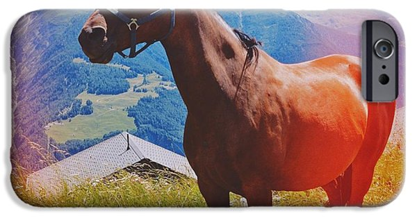 Horse In The Alps IPhone 6 Case by Matthias Hauser
