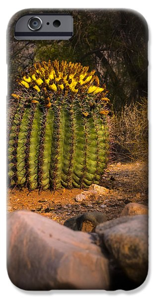 IPhone 6 Case featuring the photograph Into The Prickly Barrel by Mark Myhaver