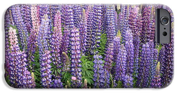 IPhone 6 Case featuring the photograph Just Lupins by Nareeta Martin