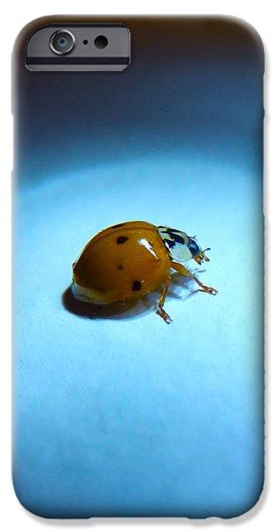 Ladybug Under Blue Light IPhone 6 Case