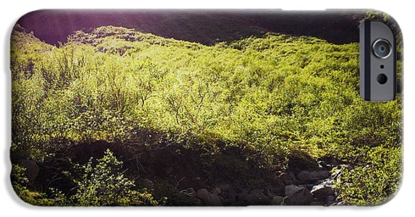 Bright iPhone 6 Case - Landscape In Iceland Laugarvatn by Matthias Hauser