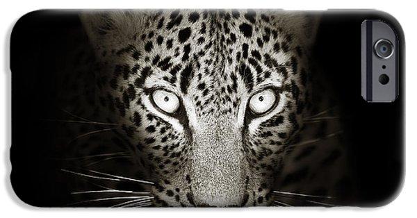 Leopard Portrait In The Dark IPhone 6 Case