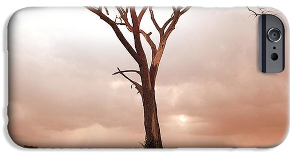 IPhone 6 Case featuring the photograph Lonely Tree by Ricky L Jones