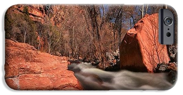 Long Exposure Photo Taken In The Oak IPhone 6 Case by Larry Marshall