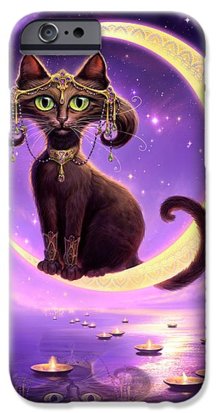 Cat Reflection iPhone Cases - Luna iPhone Case by Jeff Haynie