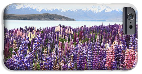 IPhone 6 Case featuring the photograph Lupins At Tekapo by Nareeta Martin