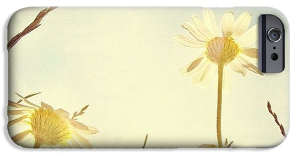 Sky iPhone 6 Case - #mgmarts #daisy #all_shots #dreamy by Marianna Mills