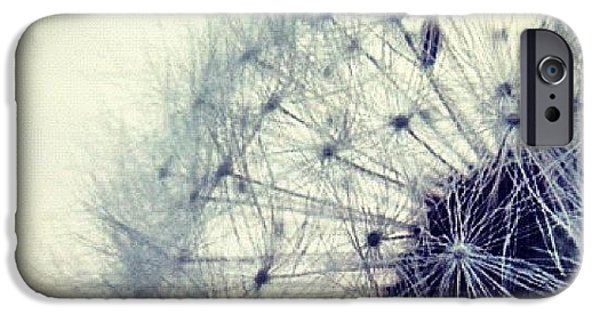 Sky iPhone 6 Case - #mgmarts #dandelion #love #micro by Marianna Mills