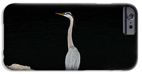 Night Of The Blue Heron 2 IPhone 6 Case