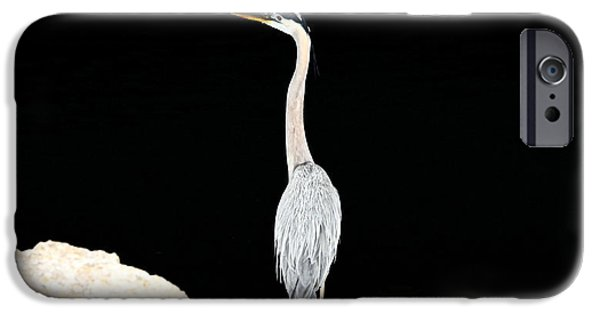 Night Of The Blue Heron  IPhone 6 Case
