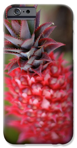 Smoothie iPhone 6 Case - Pink Pineapple by Mr Doomits