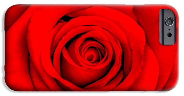 Red Rose iPhone 6 Case - Red Rose 1 by Az Jackson