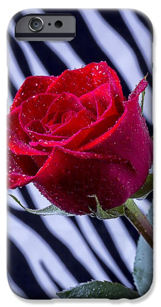 Red Rose iPhone 6 Case - Red Rose With Stripes by Garry Gay