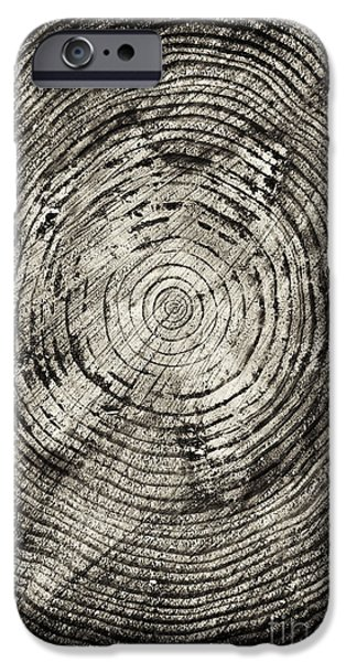 Tree iPhone 6 Case - Rings Of Time  by Tim Gainey