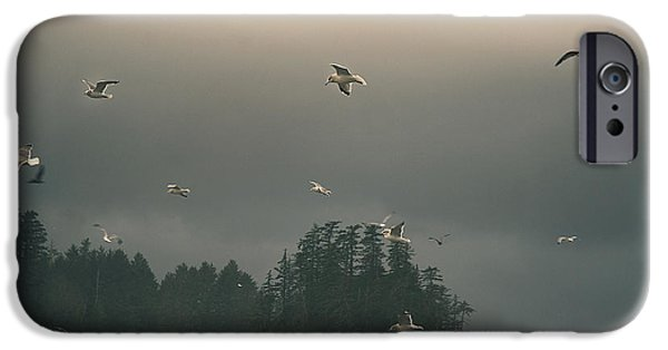 Seagulls In A Storm IPhone 6 Case