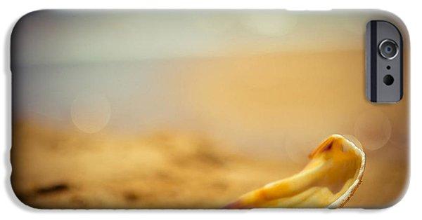 Detail iPhone 6 Case - Seashell  by Raimond Klavins