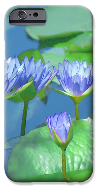 iPhone 6 Case - Silken Lilies by Holly Kempe