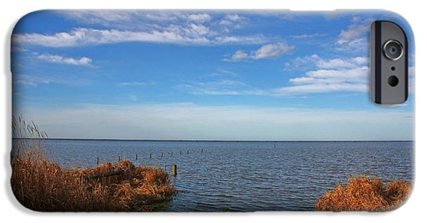 IPhone 6 Case featuring the photograph Sky Water And Grasses by Nareeta Martin