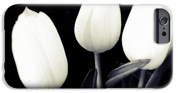 Bright iPhone 6 Case - Soft And Bright White Tulips Black Background by Matthias Hauser