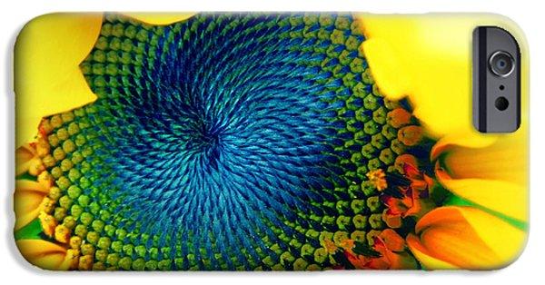 Sunflower Seeds iPhone 6 Case - Solar Energy by Marianna Mills