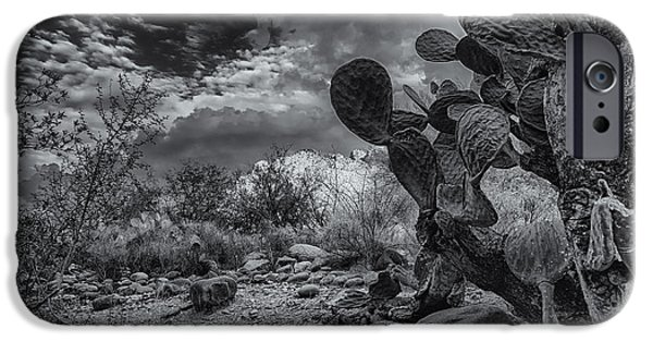 IPhone 6 Case featuring the photograph Sonoran Desert 15 by Mark Myhaver