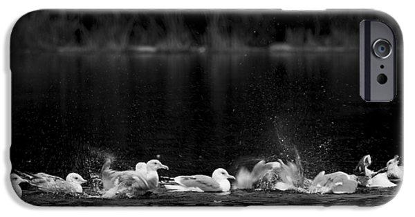 IPhone 6 Case featuring the photograph Splashing Seagulls by Yulia Kazansky