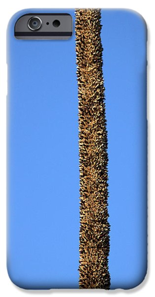 IPhone 6 Case featuring the photograph Standing Alone by Miroslava Jurcik