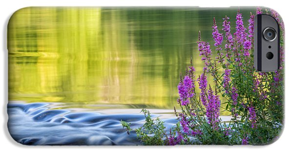Summer Reflections IPhone 6 Case by Bill Wakeley