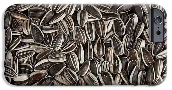 Sunflower Seeds iPhone 6 Case - Sunflower Seeds by Pascal Goetgheluck/science Photo Library