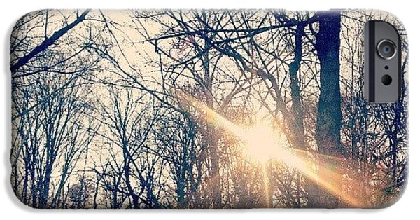 Sunlight Through The Trees IPhone 6 Case by Genevieve Esson