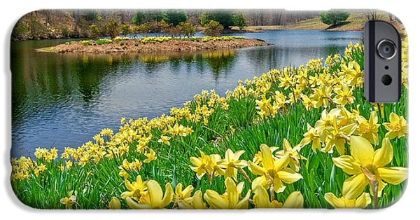 Sunny Daffodil IPhone 6 Case by Bill Wakeley